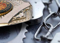 Hapšenja u Palanci zbog krađa